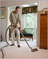 Northport,  NY Carpet Cleaning